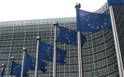 800px-European_Commission_flags