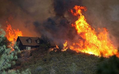 Wildfire_Grows_Rapidly_In_California_s_Lake_County