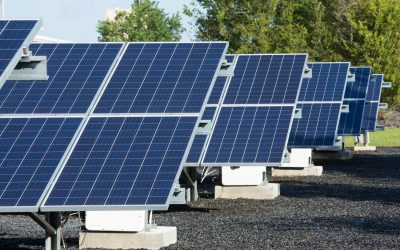 shell_black_and_veatch_microgrid_credit_businesswire