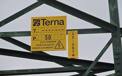 terna_wiki_pampuco